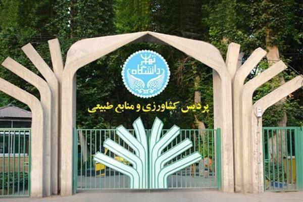 keshavarzi-min (2)